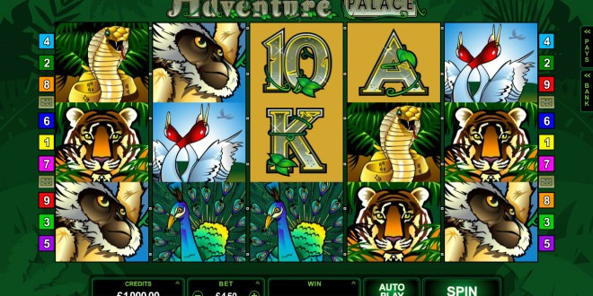 Grab Your Jungle Survival Kit If You Intend to Venture Into the Adventure Palace
